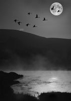 geese flying in front of moon over lake