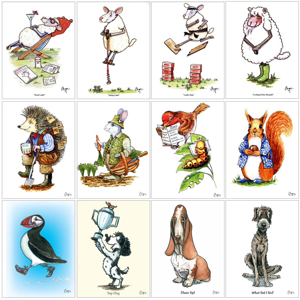 Country cartoon greeting card selection by Bryn Parry featuring Sheep, Hedgehog, Rabbit, Robin, Red Squirrel, Puffin, Cocker Spaniel, Bassett Hound and Lurcher