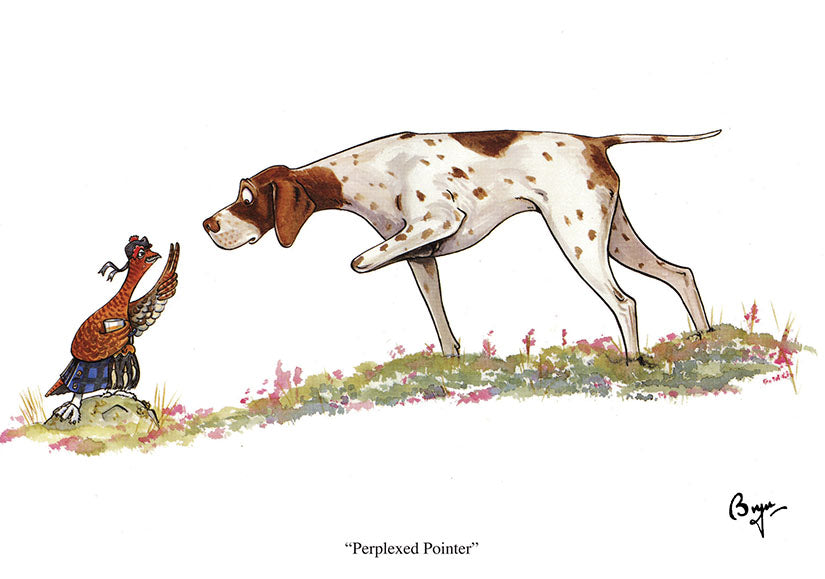 Perplexed Pointer dog and grouse greeting card by Bryn Parry
