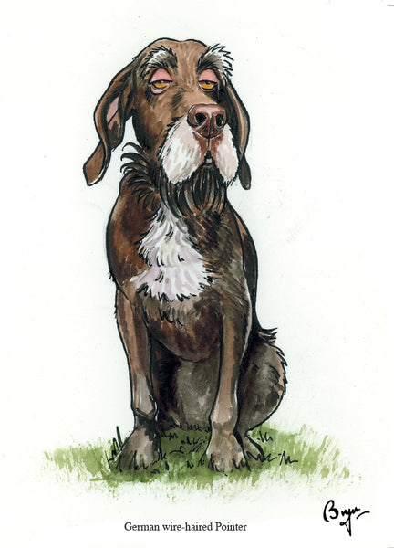 German wire-haired pointer dog Greeting Card by Bryn Parry