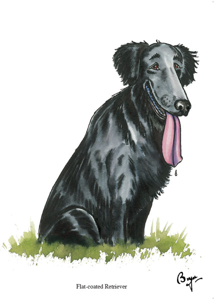Flat-coated Retriever dog Greeting Card by Bryn Parry
