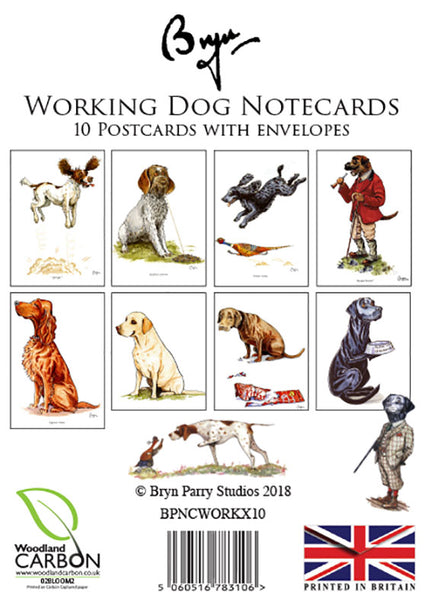 Fun Working Dog Notecards by Bryn Parry