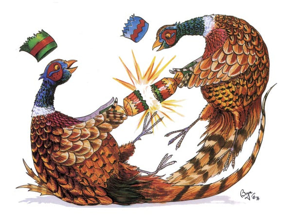 Festive Pheasant Christmas card by Bryn Parry