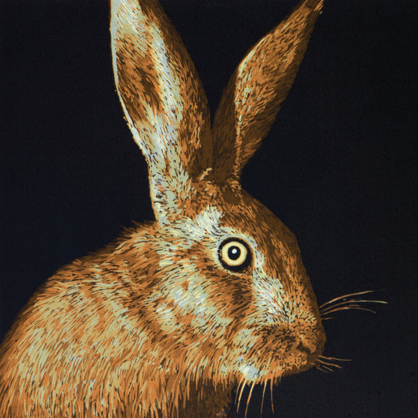 """Hare"" wildlife greeting card by Colin Blanchard."