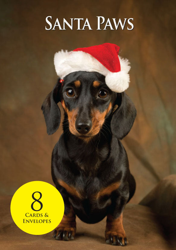 8 Dachshund Christmas Cards & envelopes by Charles Sainsbury-Plaice