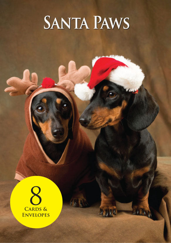 8 Dachshund Dogs Christmas Cards & envelopes by Charles Sainsbury-Plaice