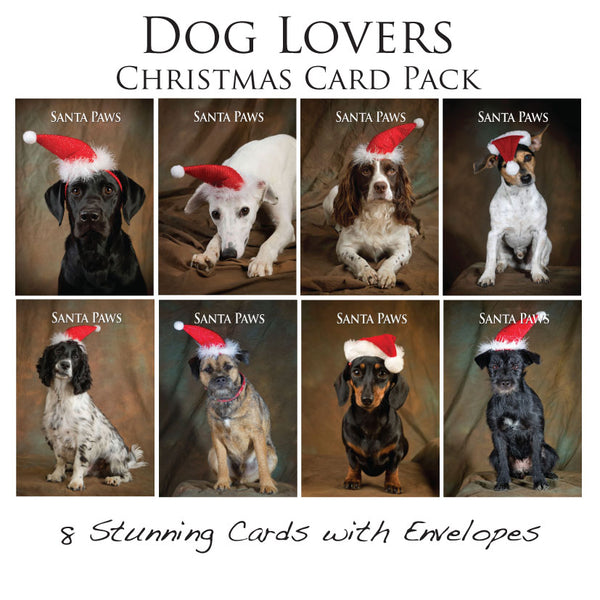 Dog Christmas Card Pack by Charles Sainsbury-Plaice