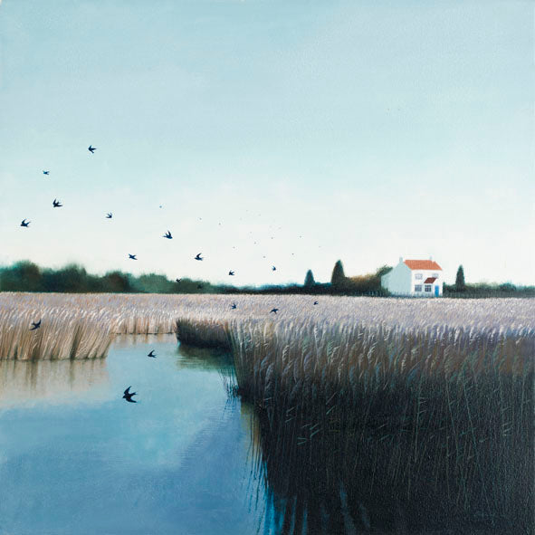 Swallows in Norfolk