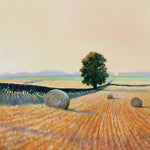 Landscape and countryside greeting card. End of a hot day