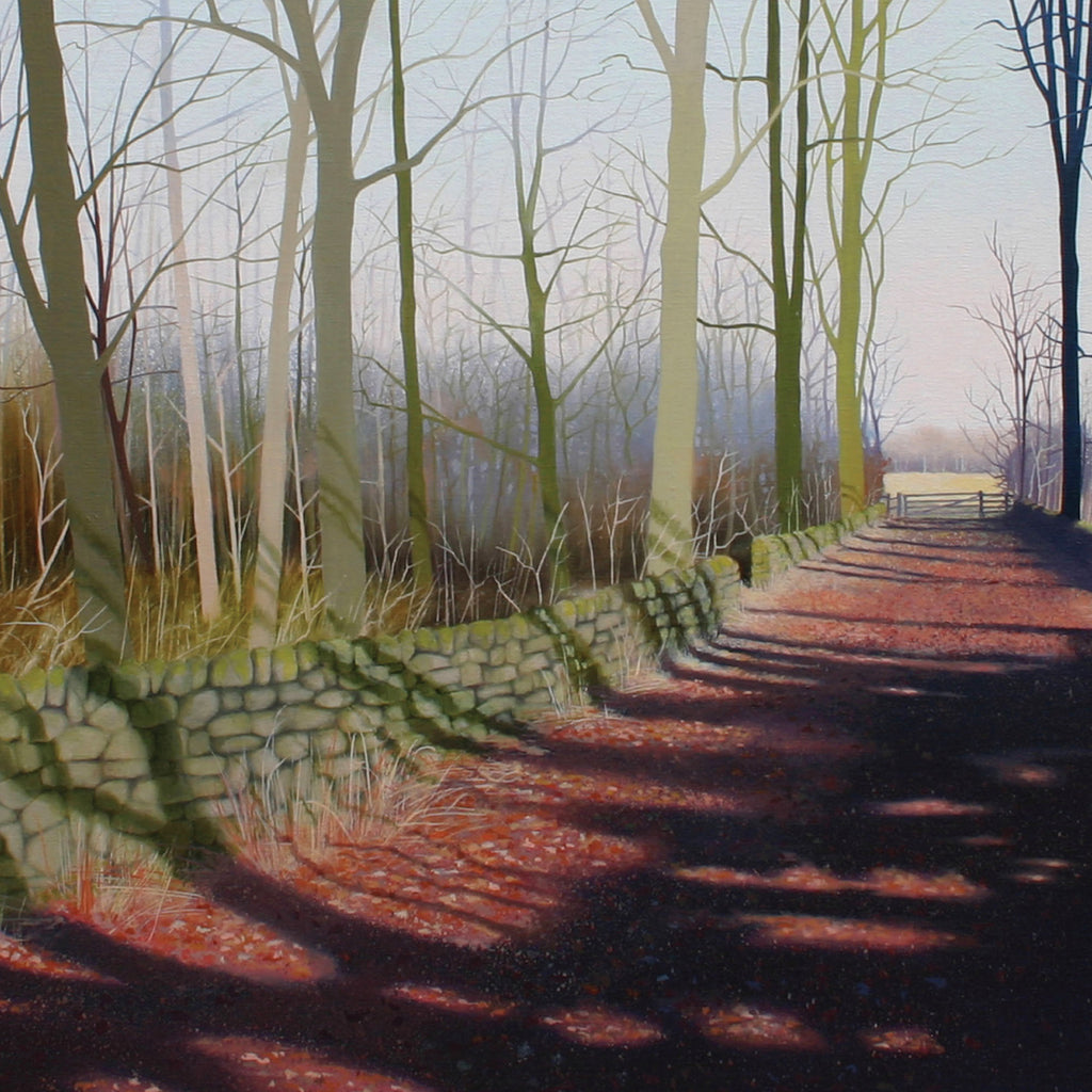 Woodland, landscape greeting card. March Shadows