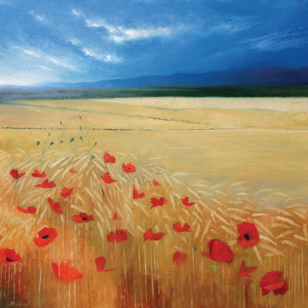Landscape and wildflower greeting card. Poppies in Wheat