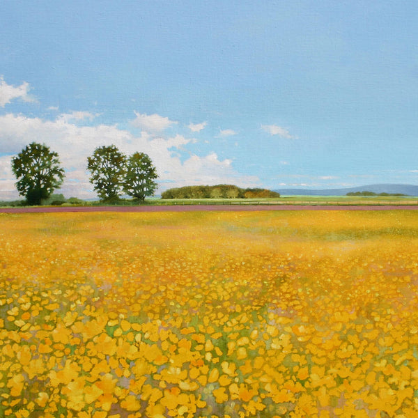 Buttercups landscape greeting card by Heather Blanchard.