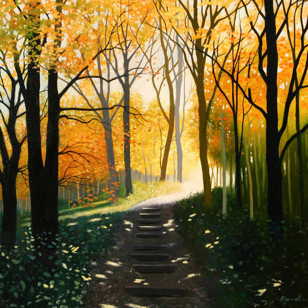 Woodland steps in November landscape greeting card by Heather Blanchard.
