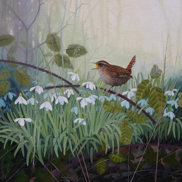 Wren on snowdrops landscape and bird greeting card by Heather Blanchard.