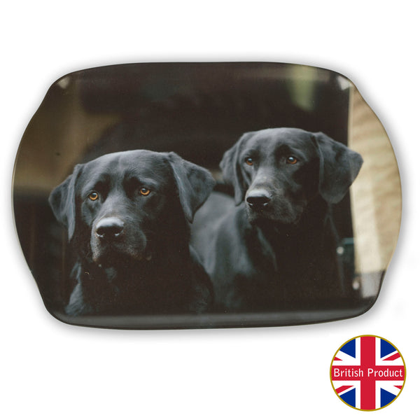 Labrador Dogs Medium Melamine Serving Tray by Charles Sainsbury-Plaice