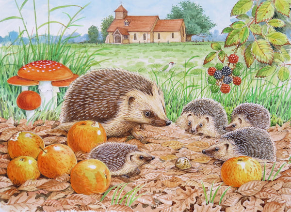 Hedgehog greeting card by David Thelwell
