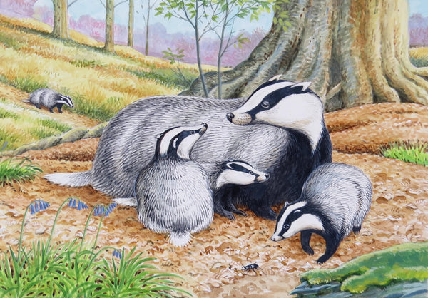 Badger greeting card by David Thelwell