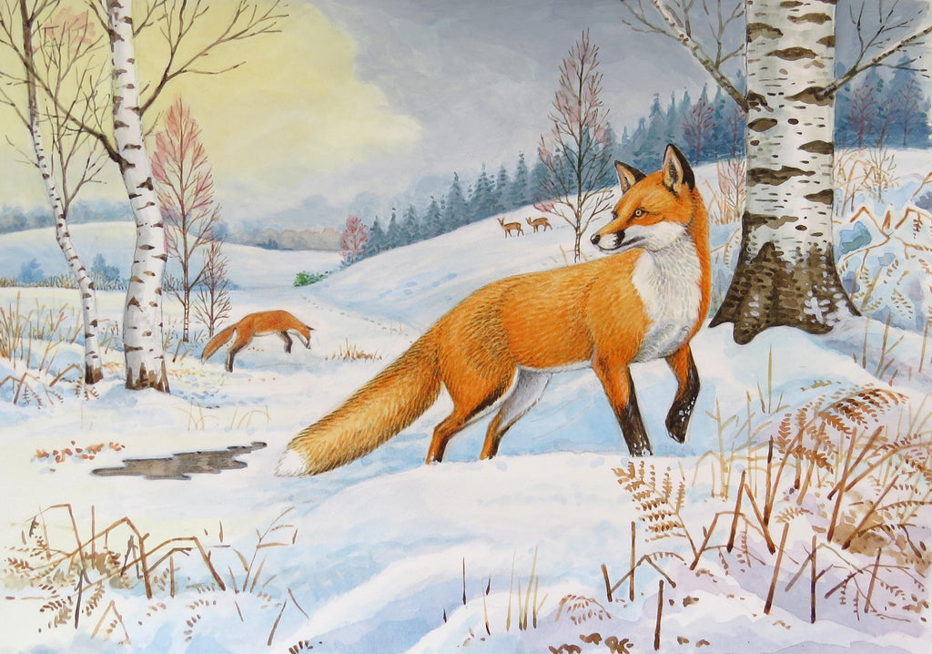Fox wildlife, nature, greeting card by David Thelwell