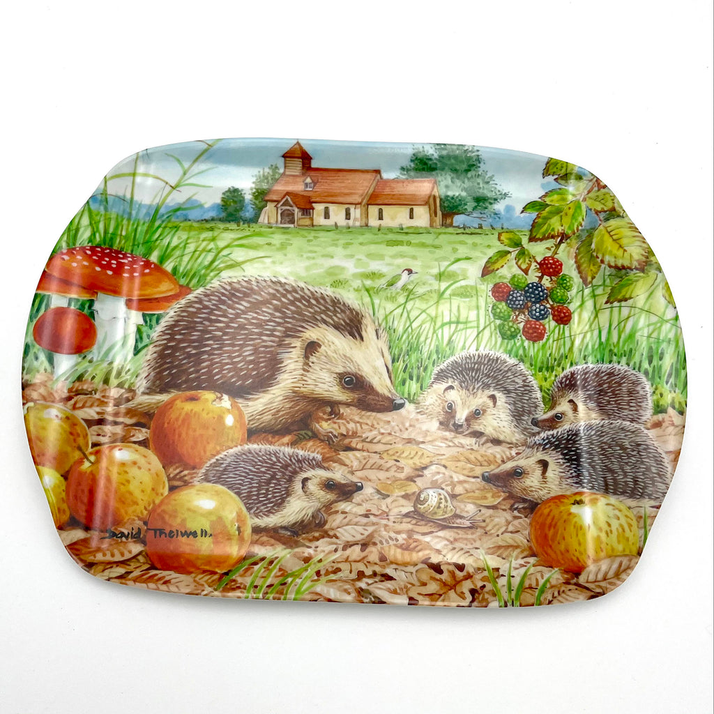 Hedgehog wildlife and nature melamine serving tray by David Thelwell
