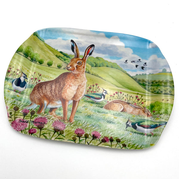 Hares and Plovers wildlife and nature melamine serving tray by David Thelwell