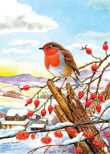 Christmas Robin Christmas Card by David Thelwell