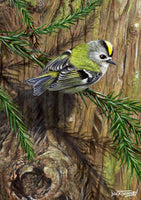 Bird greeting card. Goldcrest by Dick Twinney