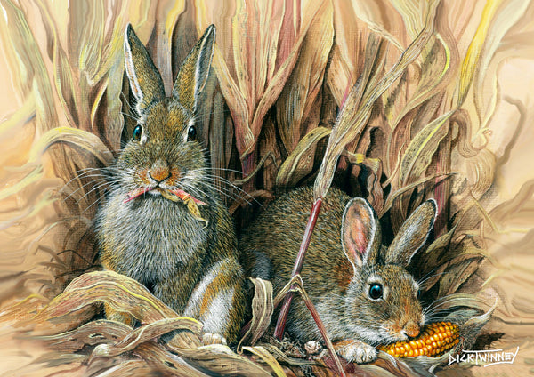 Wildlife Greeting Card. Rabbits by Dick Twinney