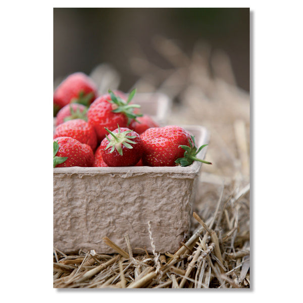 Gardening Greeting Card. English Stawberries by Charles Sainsbury-Plaice
