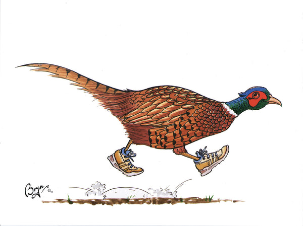 Pheasant greeting card by Bryn Parry. The Runner
