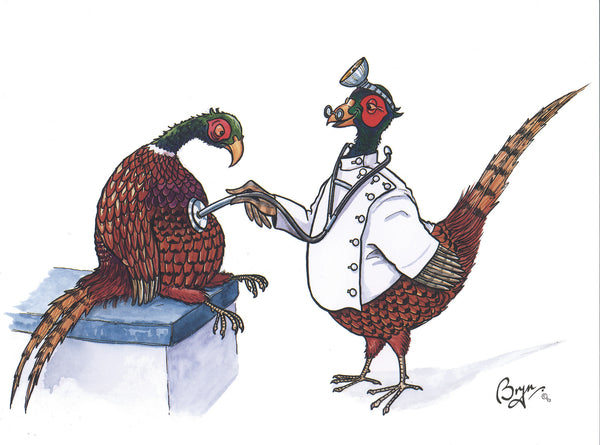 Shooting greeting card by Bryn Parry. Sick as a Pheasant