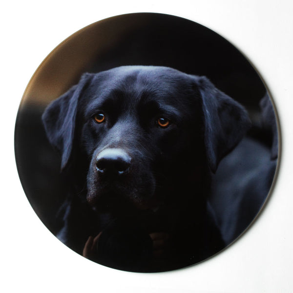 Black labradors glass platter, worktop saver