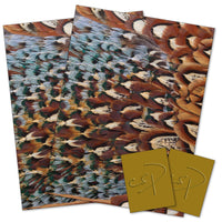 Pheasant feather wrapping paper