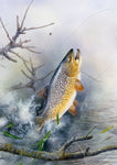 Leaping brown trout freshwater fish greeting card by M J Pledger