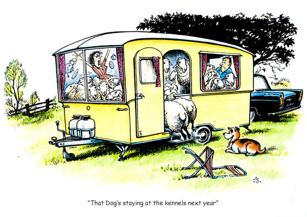 Funny caravan holiday greeting or birthday card by Thelwell