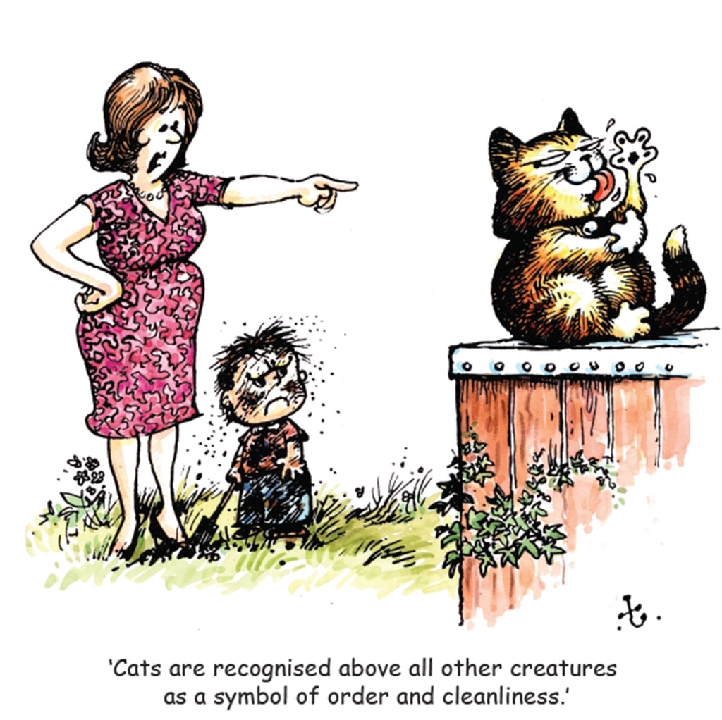 "Thelwell Cat Greeting Card ""Cat Cleanliness"""