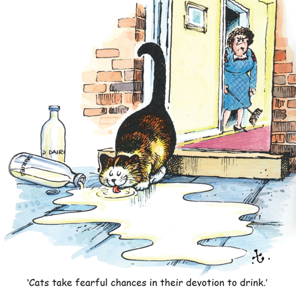 "Thelwell Cat Greeting Card ""Cat & Milk"""