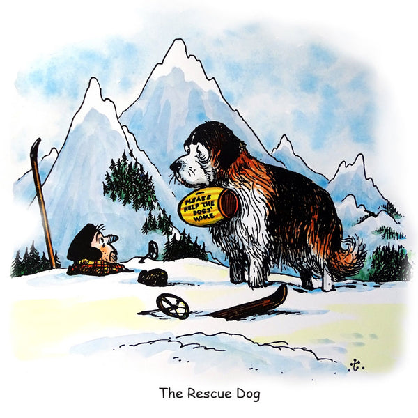Dog Greeting Card. The Rescue Dog by Norman Thelwell