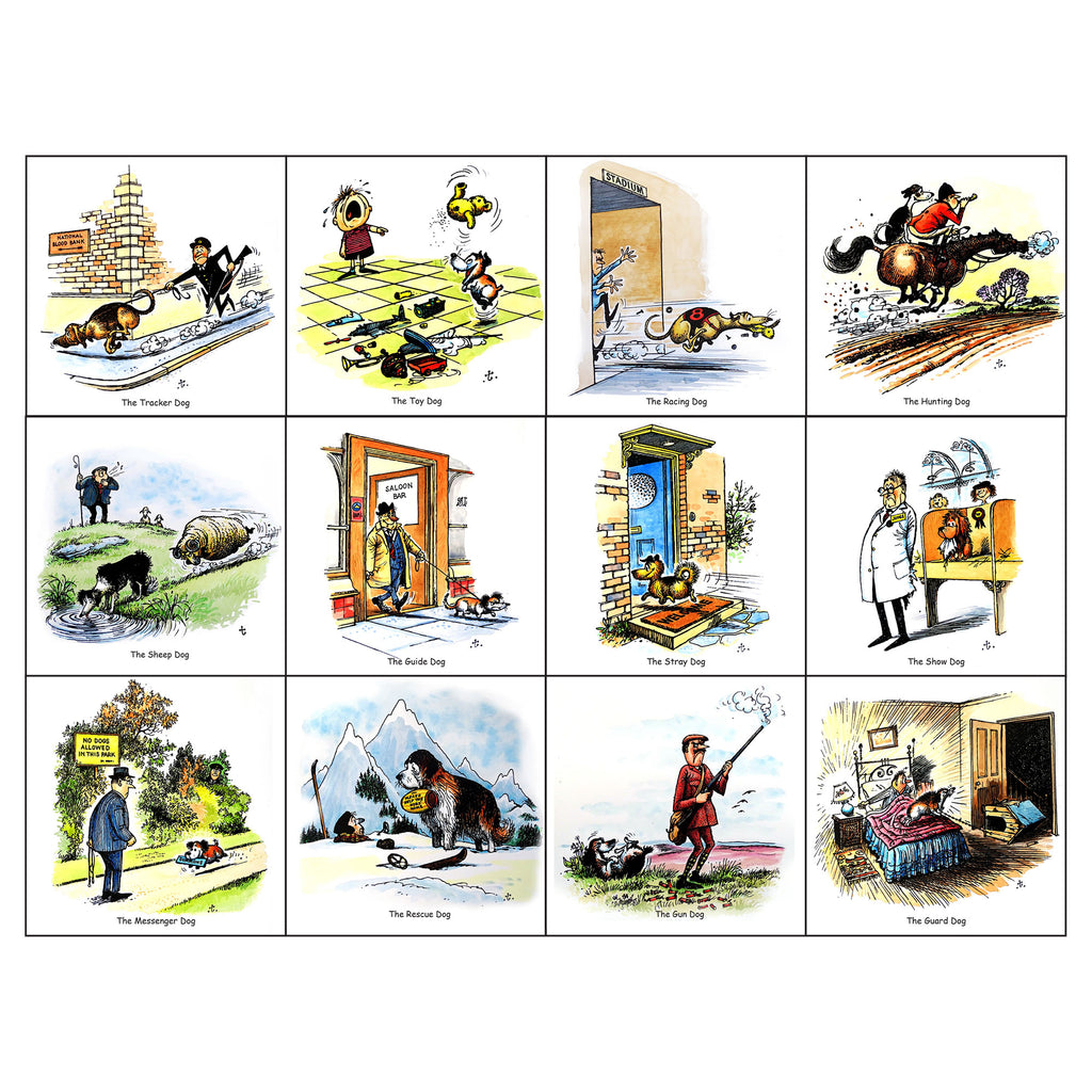 Dogs Greeting Card Multipack by Thelwell