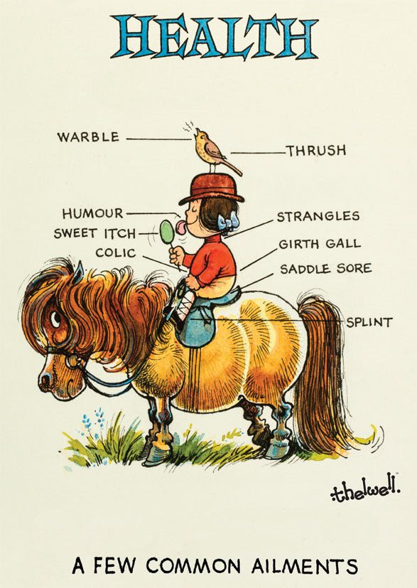 "Horse or Pony Greeting Card ""Pony Health"" by Norman Thelwell"