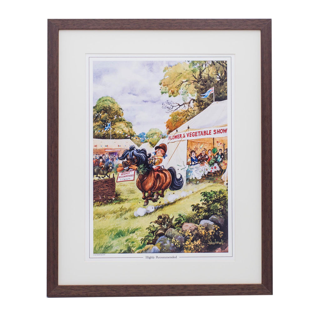 Cartoon horse or pony print. Highly Recommended by Thelwell