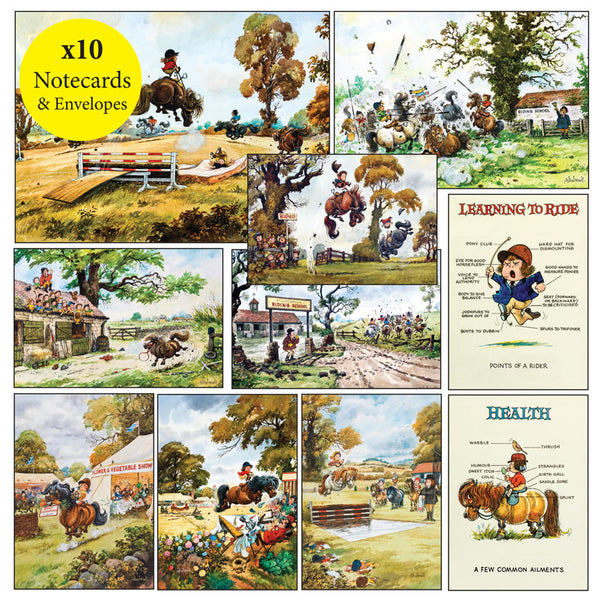 10 Thelwell pony notecards with envelopes