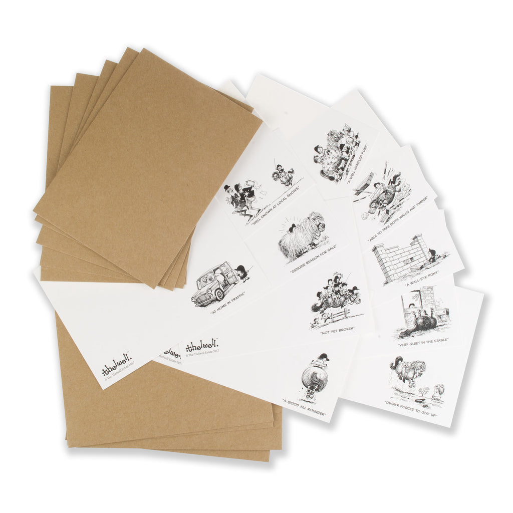 Thelwell Pony Correspondence Cards. Perfect for thank you's and reminders.