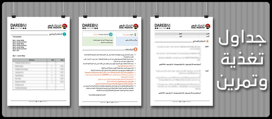 Darebni Online creates customized diet and workout plans for each individual client, based on their body's needs and requirements. We provide both gym and home workout plans according to the client's preference. Each diet contains a variety choices per meal, and is revised at the two week check-in mark. Our workout plans are tailored around the client's bodily needs to achieve a balanced and healthy physique.