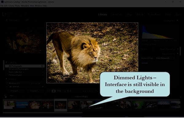 Dimming the Lights in Lightroom
