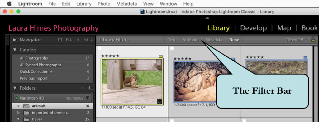 Finding Images Using the Filter Bar in Lightroom