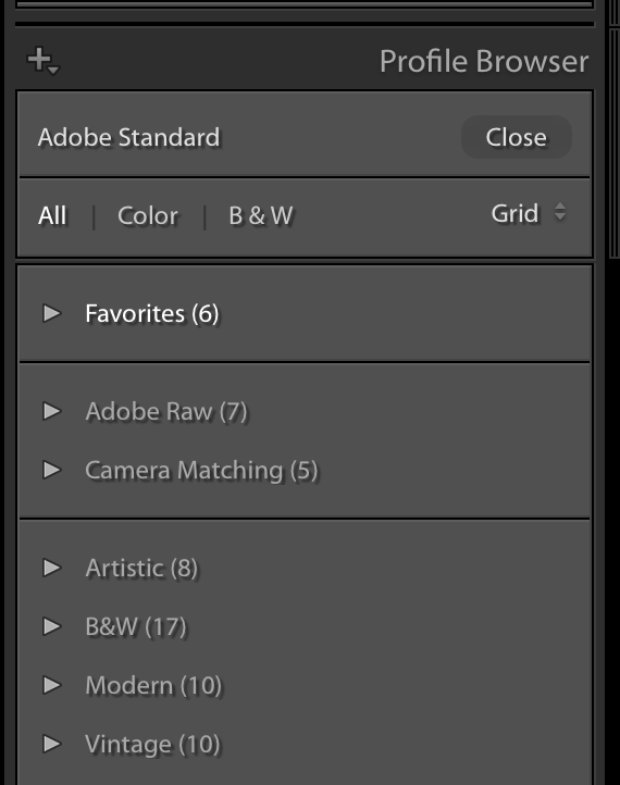 Hands On with Lightroom's Profile Feature