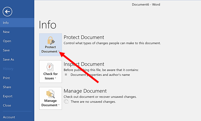 Arrow indicating the Protect Document icon