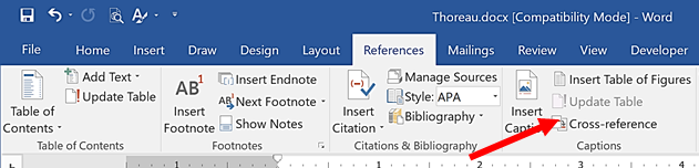 Cross-Reference icon on the Ribbon