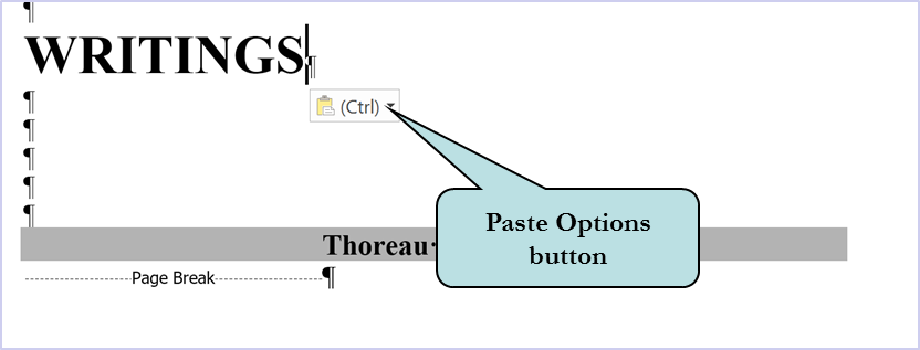 paste options button