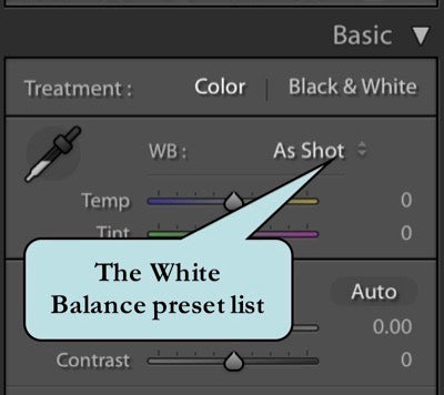 White Balance Preset List